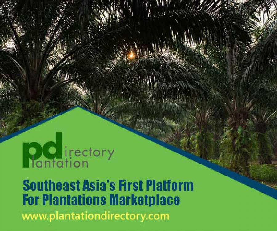 Southeast Asia First Platform for Plantations Marketplace